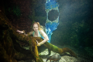 SEALIFE Fotoshooting